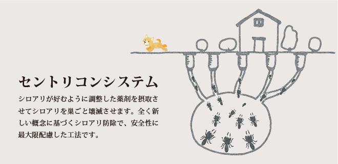 人体に悪影響を及ぼす防蟻処理はしません
